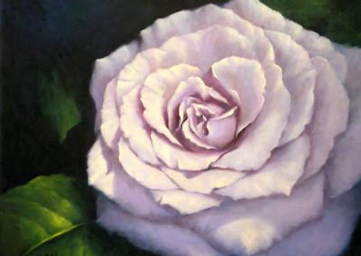 Lilac Rose with Leaf 70 x 82cm