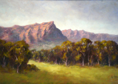 Near Brimpaen - the Grampians 85 x 57cm