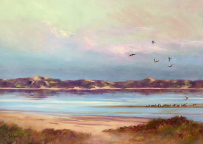 The Coorong 76 x 50cm